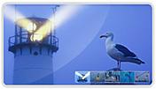 Página web desarrollada para la empresa Estudios Oceanográficos